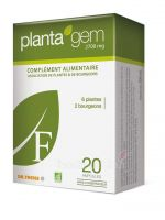 Planta'gem'F -  2700mg - 20 ampoules de 10ml