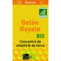 Gelée Royale pot de 25g